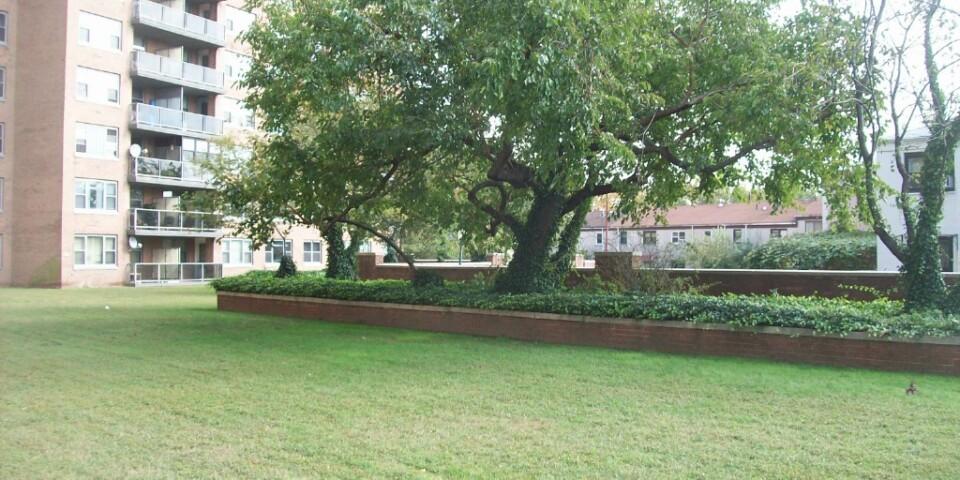 Parklike Grounds