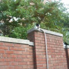 High-Tech Security System